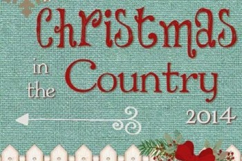 Christmas in the Country Reveal!