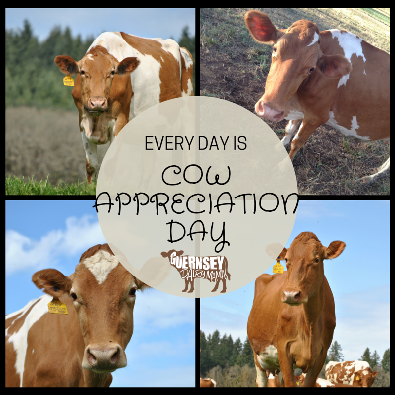 Happy Cow Appreciation Day