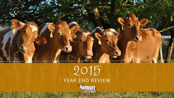 2015 Year End Review: Farm