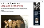 Hoard's Dairyman - Be Thankful
