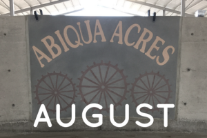Monthly Barn Report: August