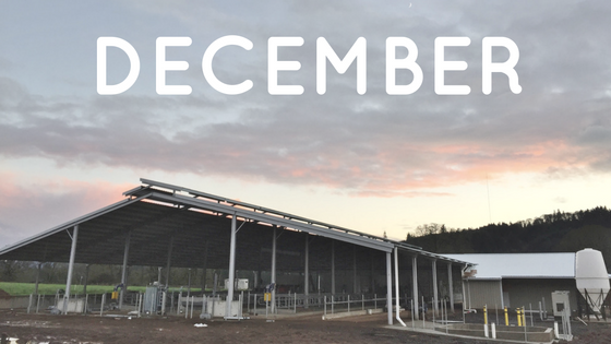 Monthly Barn Report: December