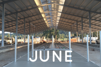 Monthly Barn Report: June