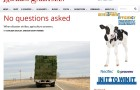 Hoard's Dairyman - No Questions Asked